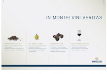 montelvini s.p.a.